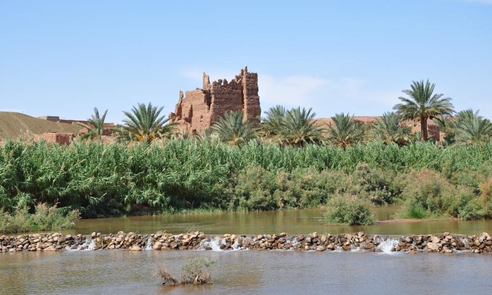 Kasbah dans la vallée du Draa